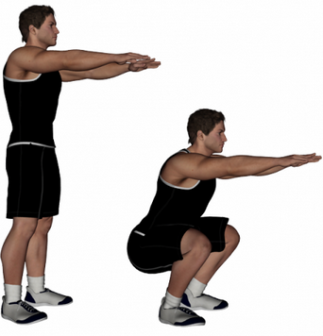 Standing with your feet shoulder width apart, squat down by sinking your weight into your hips and bending your trunk forwards. Keep your back flat and repeat for 2x20.